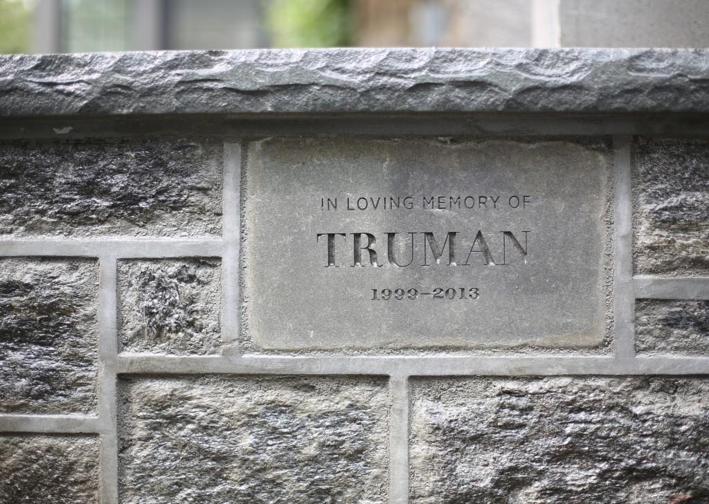 Trumann