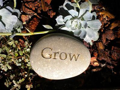 grow-garden-stone