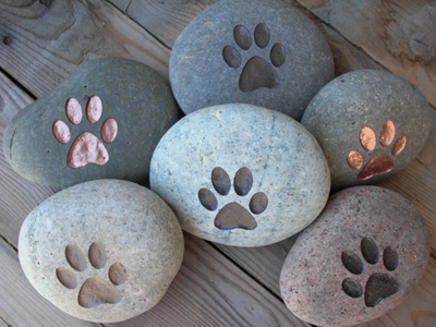 paw-assortment